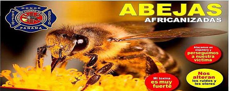 No molestes a las abejas africanas