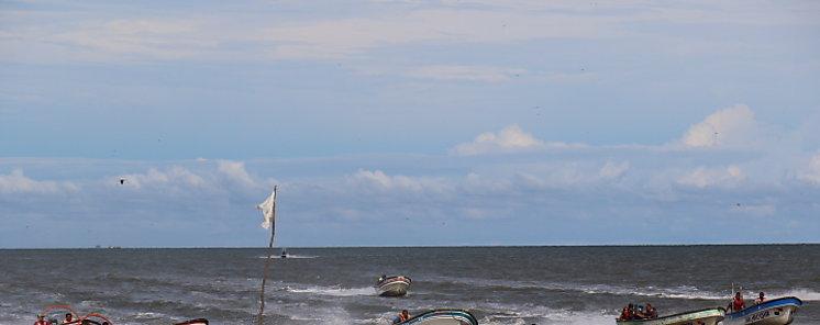 Segundo Festival del Camarón en Playa Leona