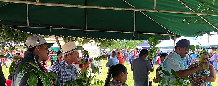 MIDA entregó plantones en el Gabinete Ciudadano de Chiriqí