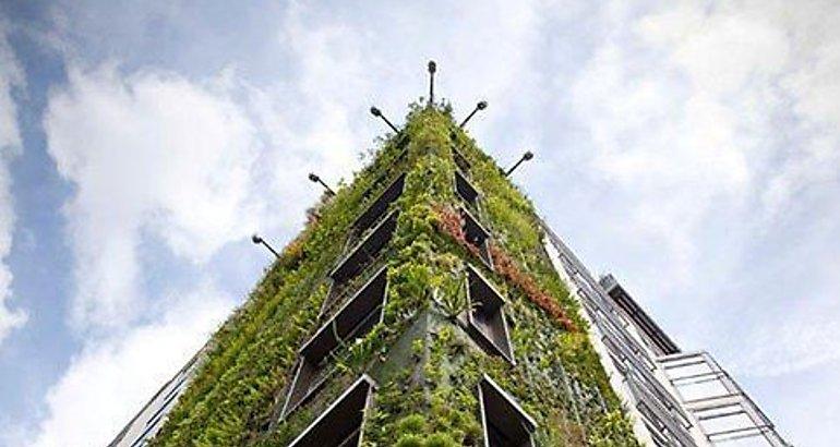 Jardines verticales para enfriar edificios for Jardines verticales panama