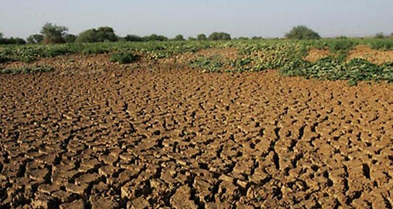 Degradaci n impacta en suelos cultivables de centroam rica for Como estan formados los suelos